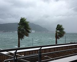 水害に含まれる台風